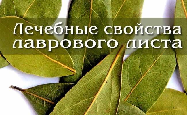 отвар из лавровых листьев от аллергии